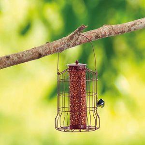 Squirrel Proof Feeders | Happy Beaks