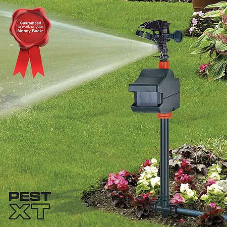 Pest Xt Jet Spray Cat Repeller Happy Beaks